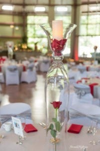 Laketown Conference Center Saugatuck Wedding 003