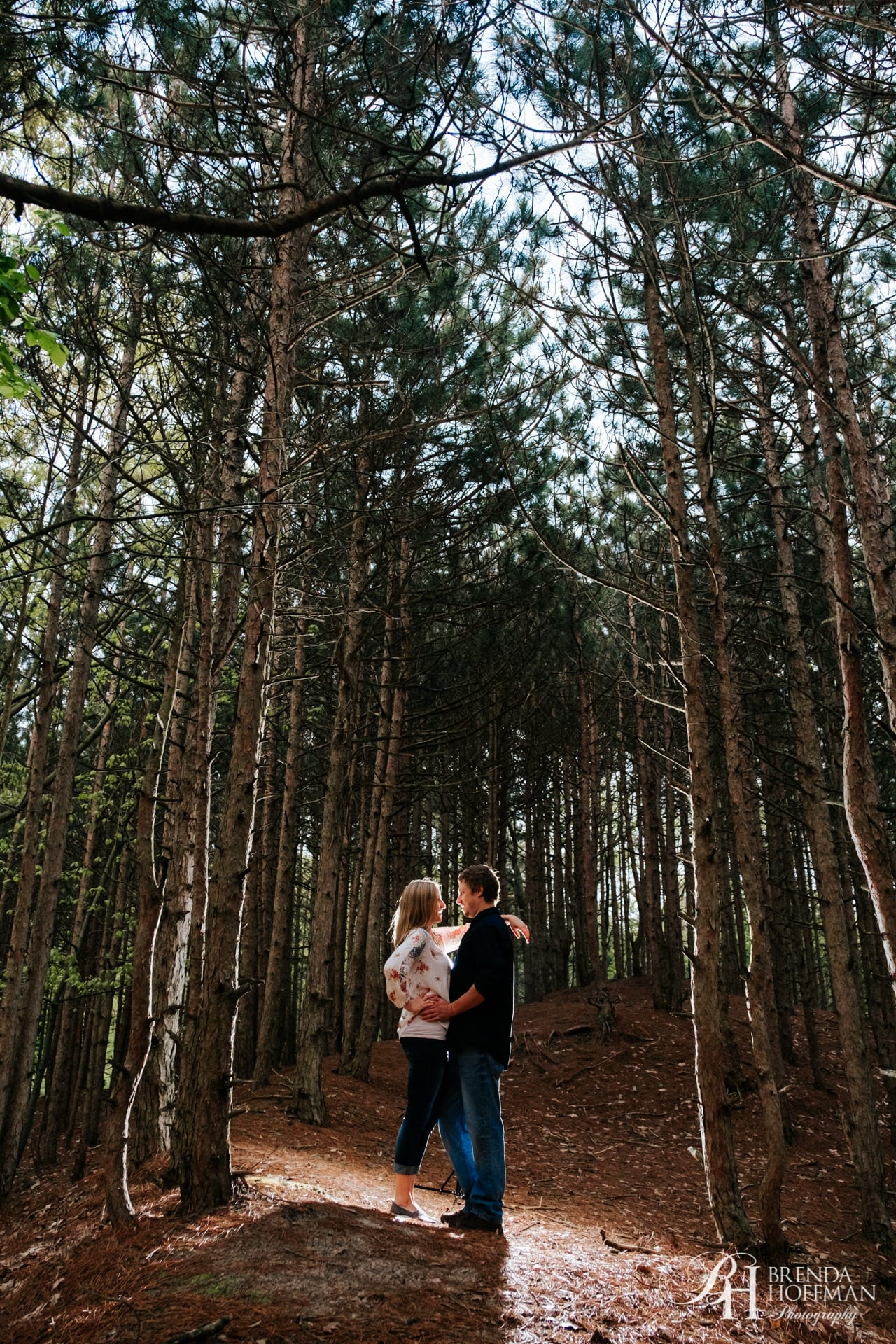 Tall Pines Engagement