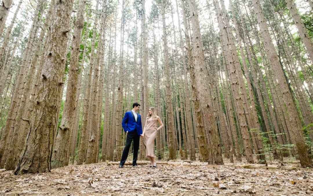 Rosy Mound Nature Preserve – Engagement Session Location